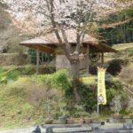【市川町】桜と春の花々の美しい隠れ家のような2ヶ所をピックアップ