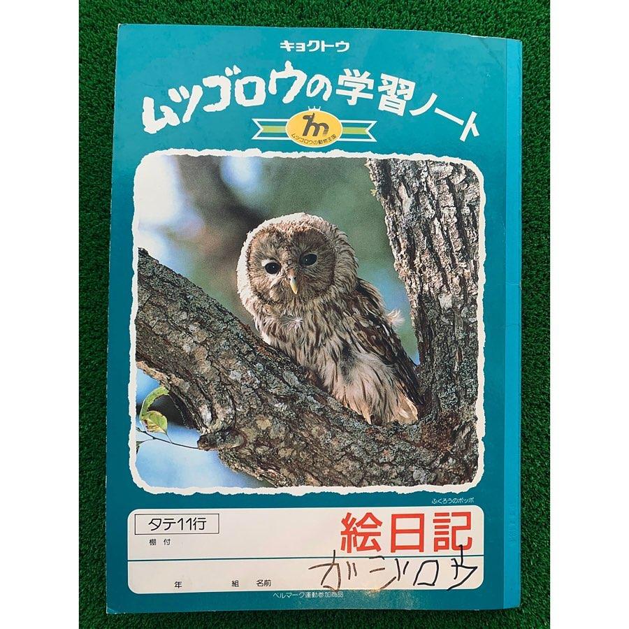 【福崎町】河童のガジロウ、絵日記を始める