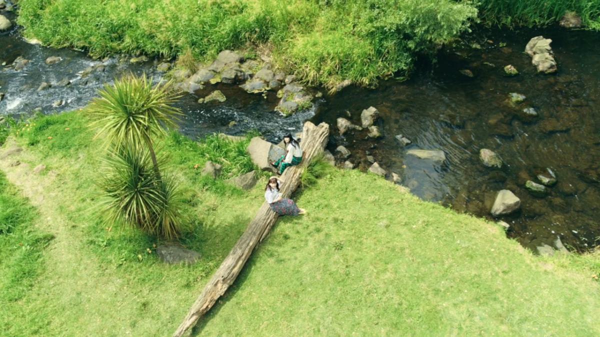 【あいみょん】「マリーゴールド」を弾き語りで歌う『GREEN JUKEBOX 風篇』20日からCM