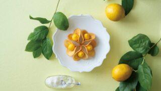 【鼓月】夏に食べたい爽やかな酸味の焼き菓子|ルフル レモンココナッツ