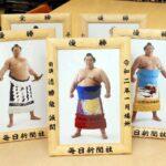 【大相撲】大相撲まいにち部屋|毎日新聞社が優勝額のミニチュア版 通販サイトたちあげ