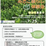 【朝来市】あさご暮らし体験会|お茶摘み&茶葉料理体験 参加者募集