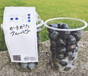 【市川町】笠形オーガニックファーマーズのブルーベリー