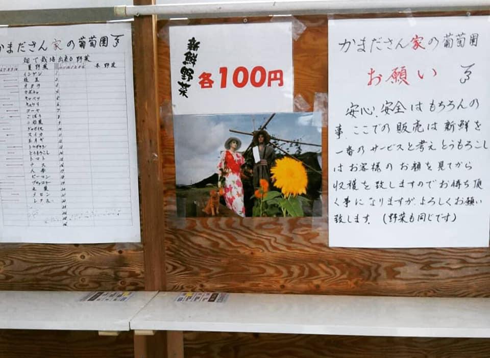 【市川町】注文を受けてから収穫する直売所|かまださん家のぶどう園