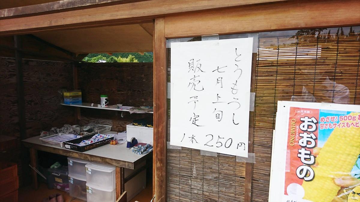 【市川町】めざせ500gオーバー!トウモロコシの直売開始 かまださん家のぶどう園