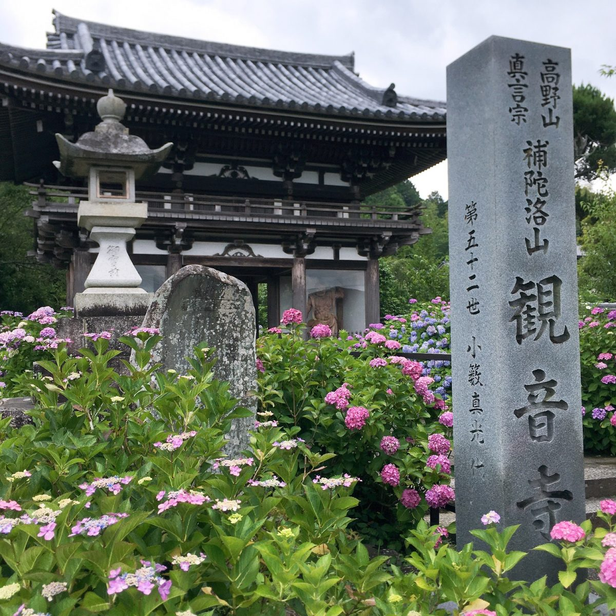 京都府福知山市(関西花の寺第一番 観音寺※あじさい寺)