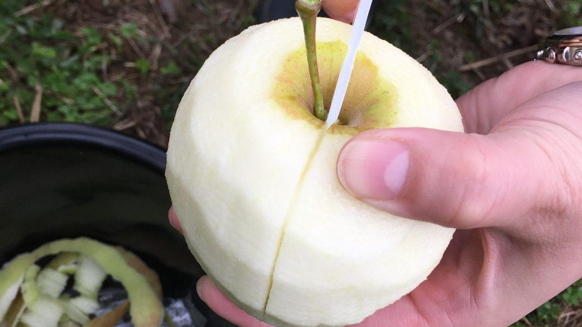 原観光りんご園