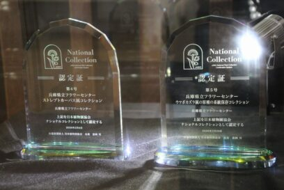 【加西市】QRコードをスマホで読んで。ナショナルコレクションを公開|兵庫県立フラワーセンター