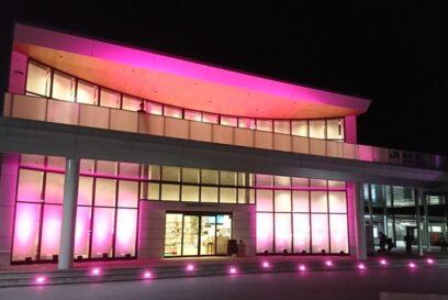 【ピンクリボン2020】ピンクライトアップ|乳がん検診の早期受診を推進