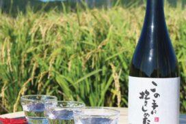 【多可町】純米吟醸「この手に抱きしめたい」 歌手、加藤登紀子さんブランド酒