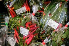 ふるさと宍粟PR館 きてーな宍粟|宍粟の恵みがいっぱい