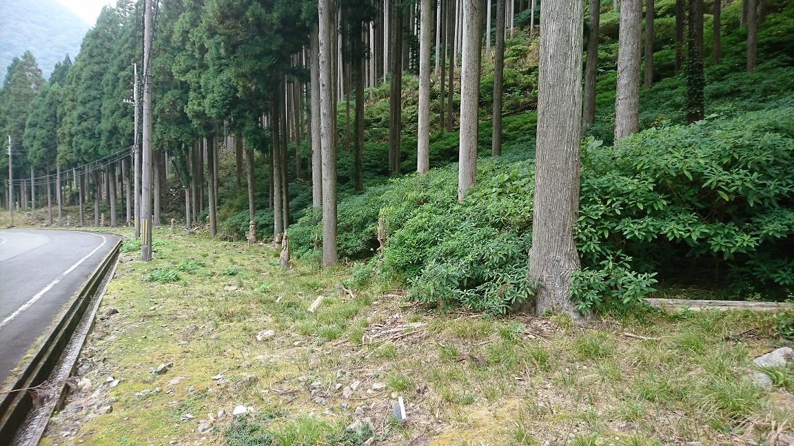 【宍粟市】 山中に現れる彫刻群がなんだかスゴイ|兵庫県道8号線(加美宍粟線)坂の辻峠