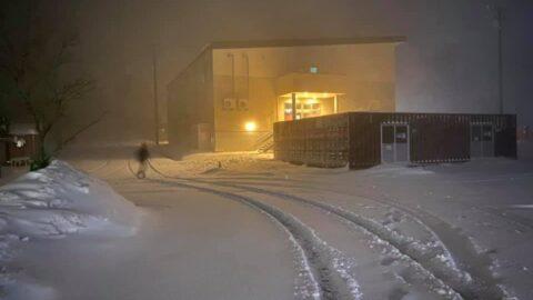 めっちゃえぇ雪降ってます|峰山高原リゾート ホワイトピーク