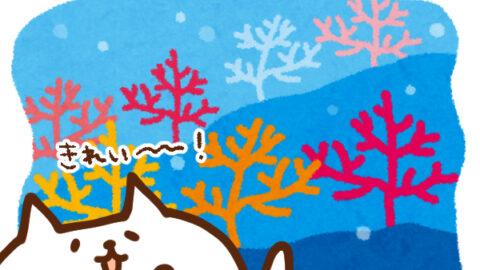 【今日はなんの日】3月5日  サンゴの日