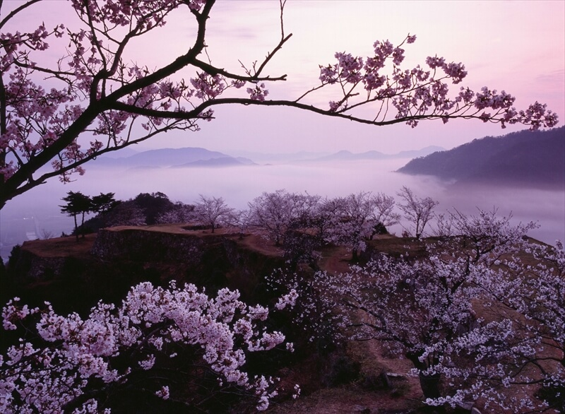 【竹田城跡】ライトアップイベントで楽しめるテイクアウトお弁当|⽵⽥城 城下町 ホテルE