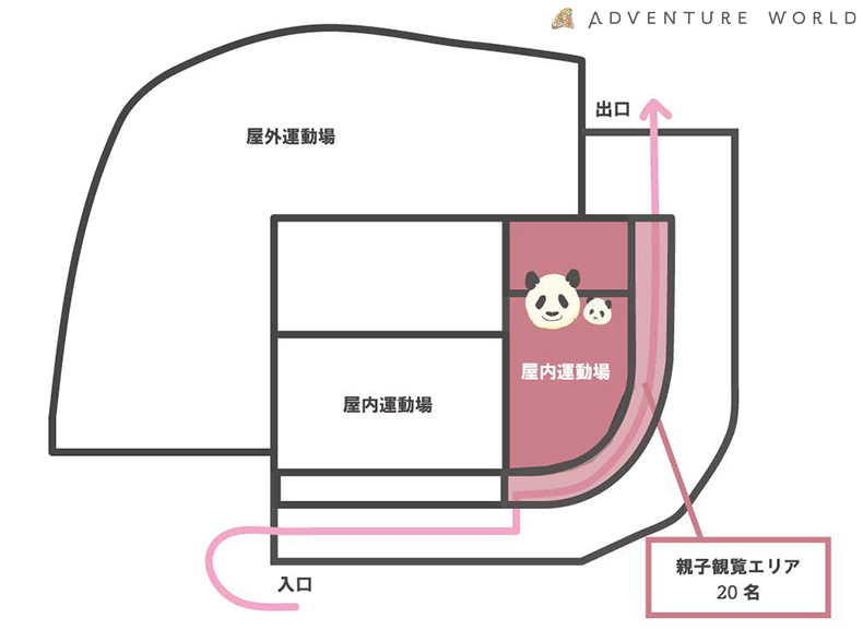 【観覧抽選受付中】ジャイアントパンダの親子公開!|アドベンチャーワールド