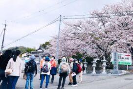 【加西市】ふるさと再発見ハイキングが開催されました|住吉神社・ぎをん山・大年神社