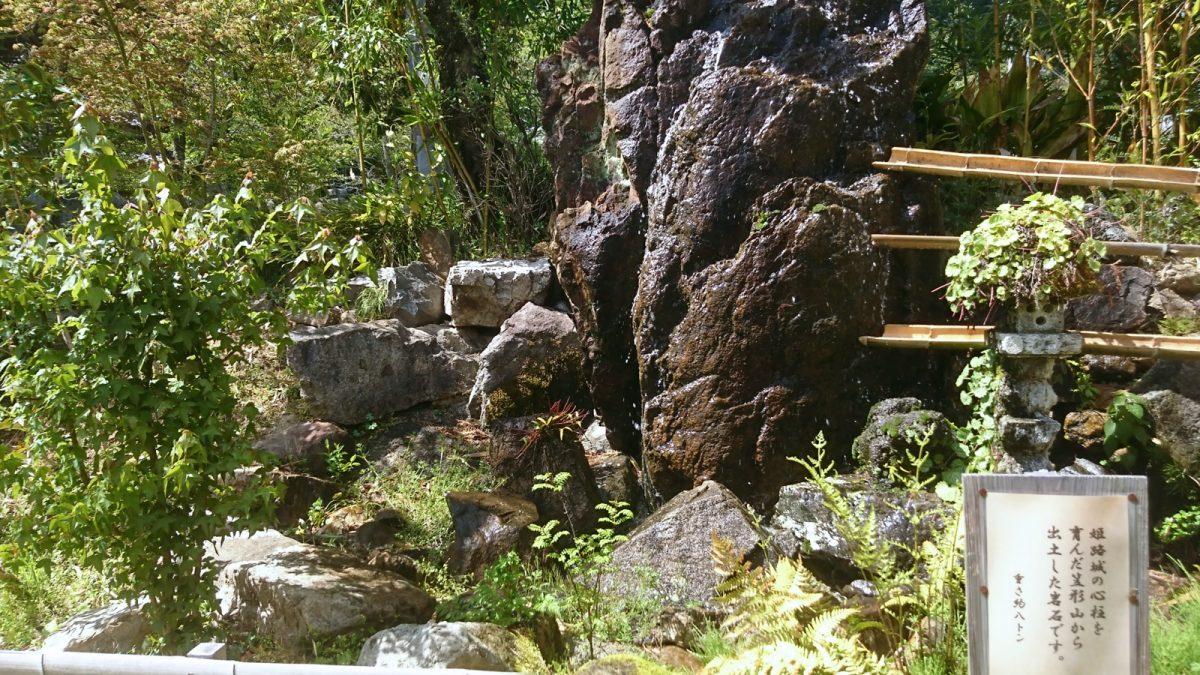 【市川町】炭火で焼く3種のコースが新登場|新緑のお庭で非日常ジビエBBQ