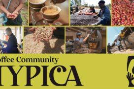 【TYPICA】コーヒー生豆流通のDXを加速するプラットフォーム開始