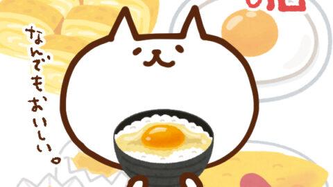 【今日はなんの日】5月22日 たまご料理の日