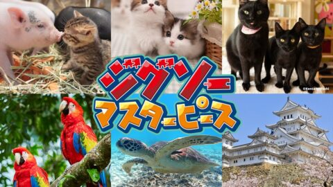 【Switch】『ジグソーマスターピース』 名城シリーズ第二弾に姫路城