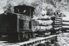 【波賀森林鉄道】鉄道跡再生ツアー 参加者を募集 宍粟市