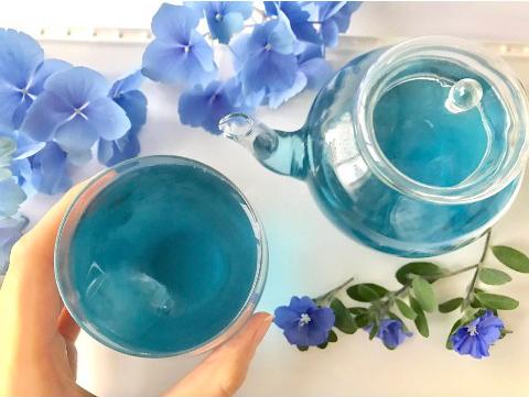 【きれい】見てるだけで涼しい、きらめく『青』の世界。おうちカフェにも|ヴィレヴァン