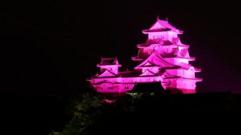 ピンクリボンライトアップ 姫路城