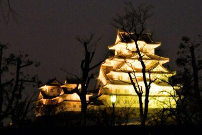 姫路城がオレンジ色にライトアップ – 世界アルツハイマーデー|姫路市