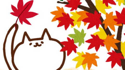 【今日はなんの日】9月12日|秋のメープルもみじの日