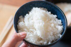 【和食さと】京都府丹波産 『こしひかり』 2kg 800円で数量限定販売