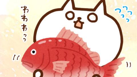 【今日はなんの日】10月11日|鯛の日